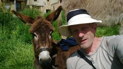Becoming a donkey owner