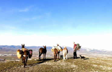 ONE DAY/MULTI DAY DONKEY TREKKING
